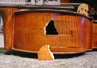 Damaged Cello Rib